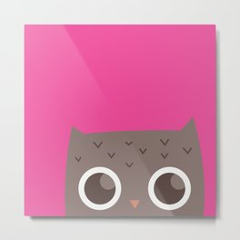 The Hiding Owl Metal Print