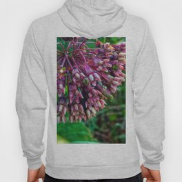 Milkweed Hoody