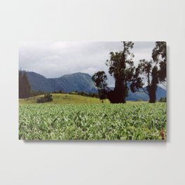 Colombian Farm & Mountains Metal Print