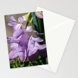Lavender Freesias Stationery Cards