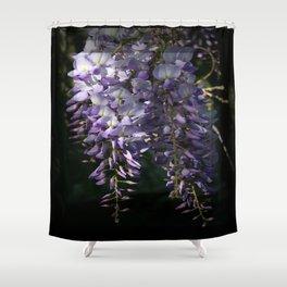 Wisteria With Garden Background Shower Curtain