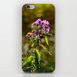 Complimentary Flowers iPhone Skin