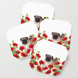 Pug - Poppies Field Coaster