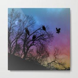 Night Wisdom -Colorful Metal Print