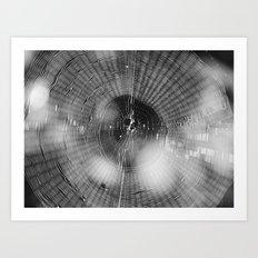 spider web 2016 III Art Print