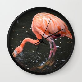 National Aviary - Pittsburgh - American Flamingo 2 Wall Clock
