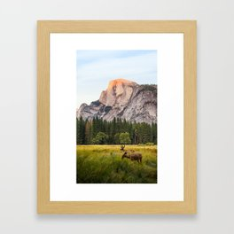 Yosemite Valley With Deer In The Foreground Framed Art Print