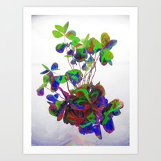 Cut clovers, databending/vector painting/dream smoothing rendition. Art Print