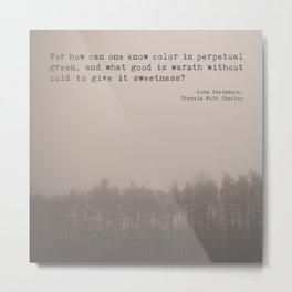 How Can One Know Color? Metal Print