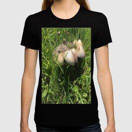 The beautifull Magic of Mushrooms T-shirt
