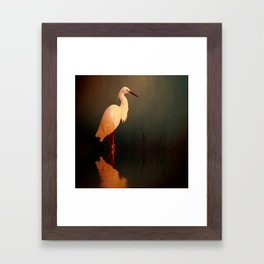 Midnight Egret Framed Art Print