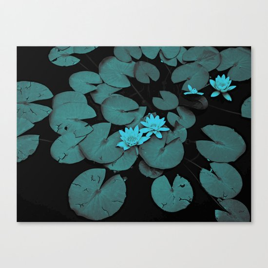 Lily pad in blue nocturne Canvas Print