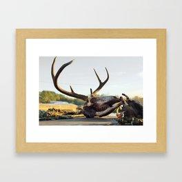 buck kill Framed Art Print