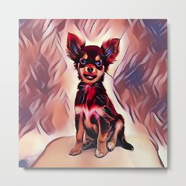 A Long Haired Chihuahua Metal Print