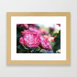 Pinkalicious Framed Art Print