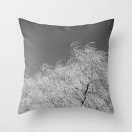 Spring Breeze, Port Hope, Ontario Throw Pillow