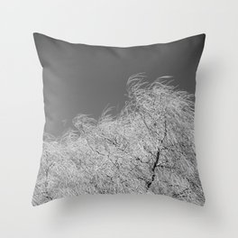 Spring Breeze, Port Hope, Ontario Throw Pillow
