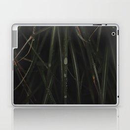 DEWY GRASS Laptop & iPad Skin