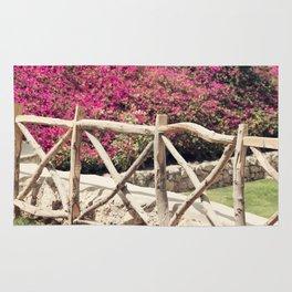 Spring fence Rug