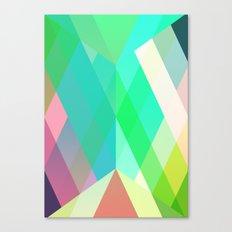 paracetamol Canvas Print