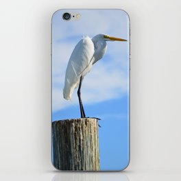 Perching White Egret iPhone Skin