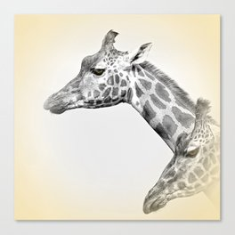 Giraffes With A Hint Of Colour Canvas Print