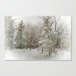 A Day in December Canvas Print