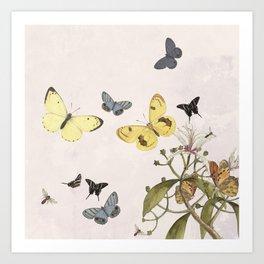 Let us dance in the sun- butterflies  Art Print