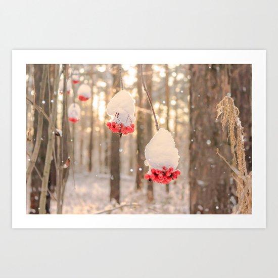 Rowan berries in the snow Art Print