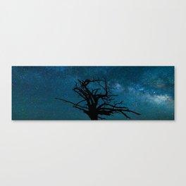 Zion National Park Stars Canvas Print