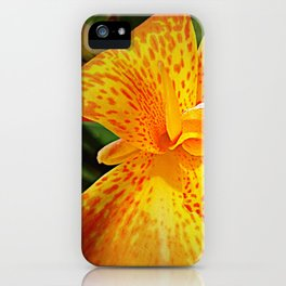 'TIGER TIGER' iPhone Case