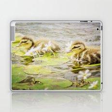 Ducklings Laptop & iPad Skin