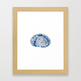 Ink blue urchin Framed Art Print