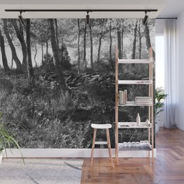 Black and white country wicked forest Wall Mural