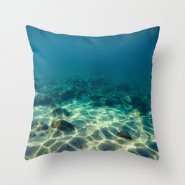 Underwater scene Throw Pillow