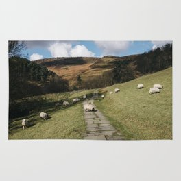 Stone footpath and grazing sheep. Edale, Derbyshire, UK. Rug