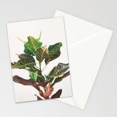Croton Stationery Cards