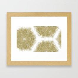Fiber Mandalas I Framed Art Print