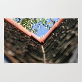 Roof Rug