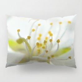 Whimsy Bloom Pillow Sham