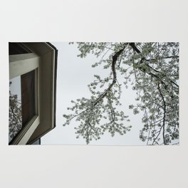 spring bloom reflected in loft window Rug