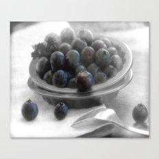 Fantastic blueberry pleasure Canvas Print