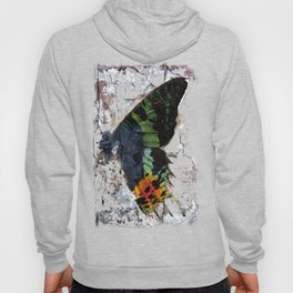 Sunset Moth Wing Abstract Hoody