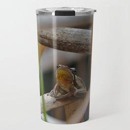 Slender Tree Frog taken near the Moore River Travel Mug