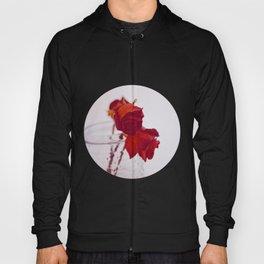 red rose. Hoody