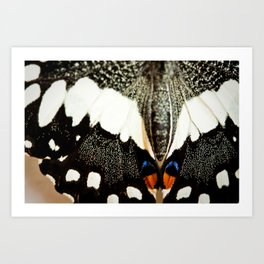 she flutters by Art Print