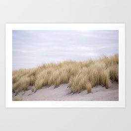 Field of grass growing in the sand Art Print