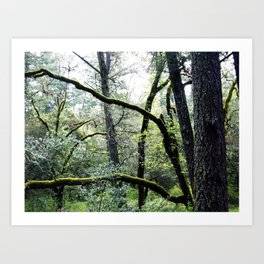 as nature intended Art Print