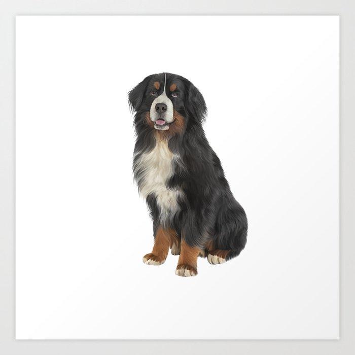 Bernese Mountain Dog Drawing Funny Dog Art Print By Bonidog