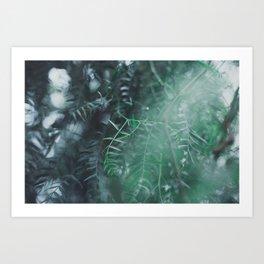 Paradise 03 Art Print
